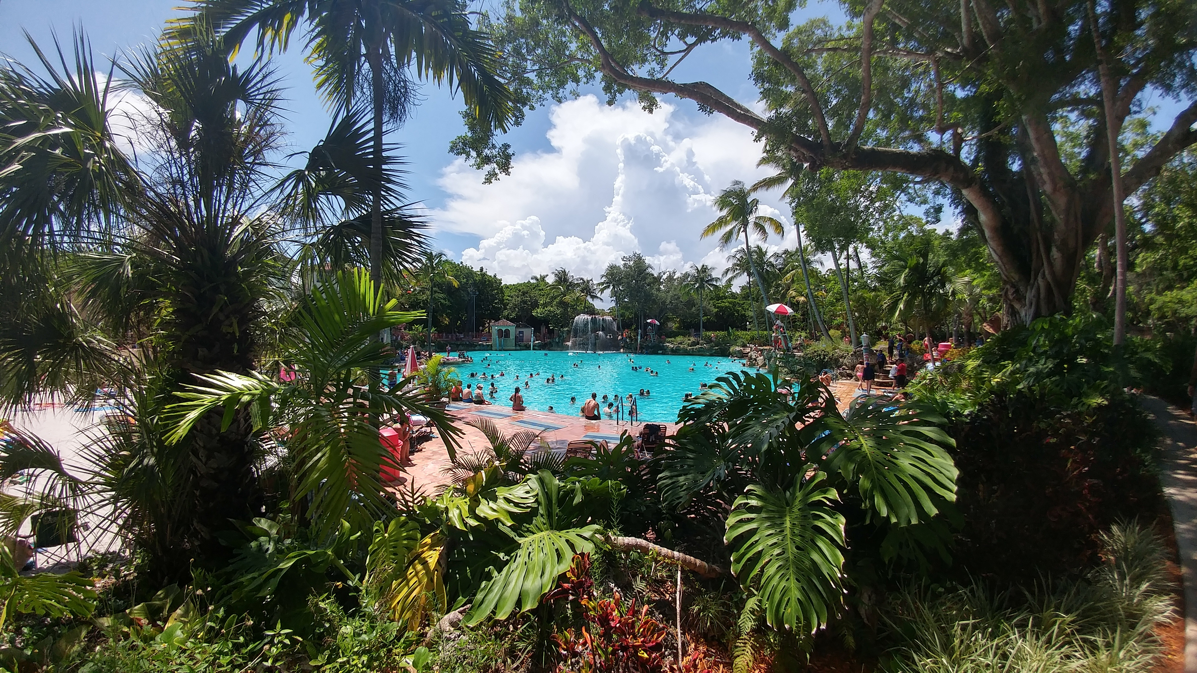(Venetian Pool, Coral Gables, Fl. Jun 25th, 2016